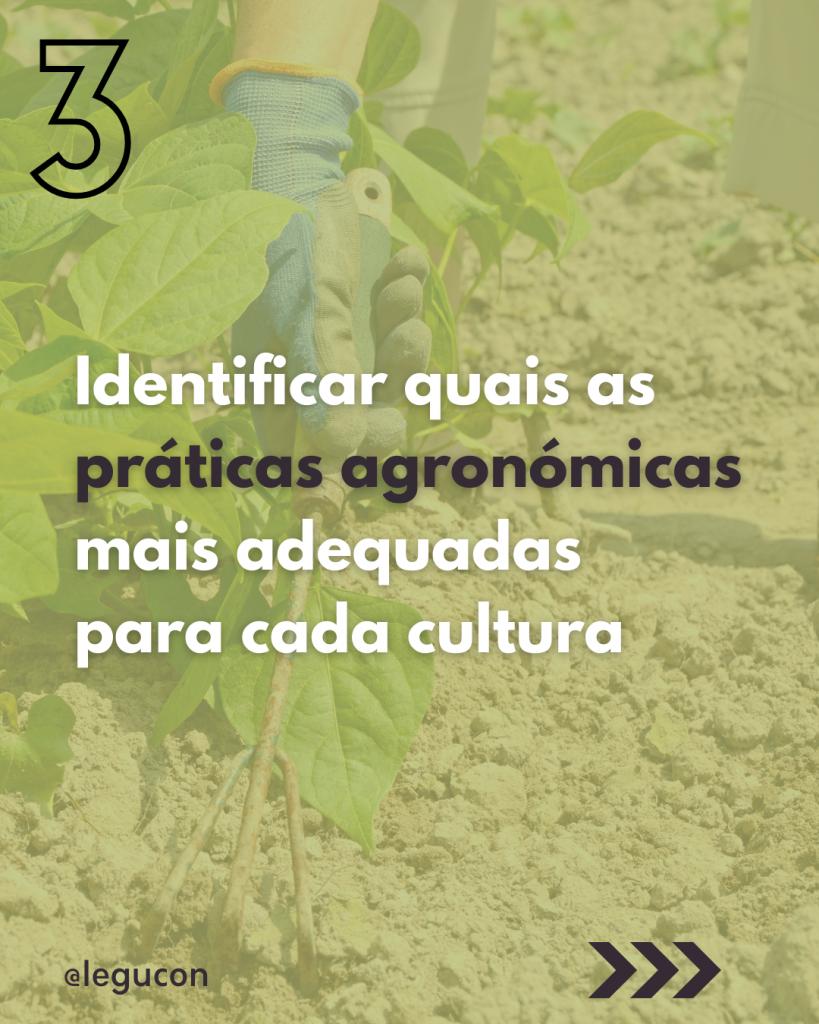 Objetivos agronómicos: práticas